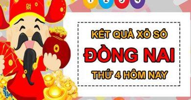 Dự đoán XSDNA 24/3/2021 chốt cầu lô giải đặc biệt Đồng Nai